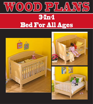 3-In-1 Bed For All Ages