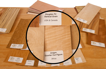 Wood Veneer Identification Kit
