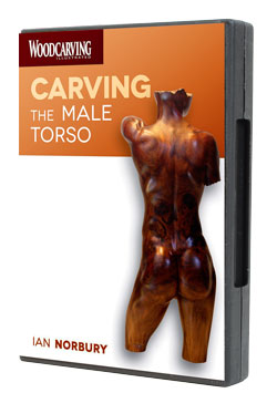 Carving the Male Torso