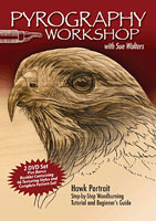 Pyrography Workshop with Sue Walters 2 DVD